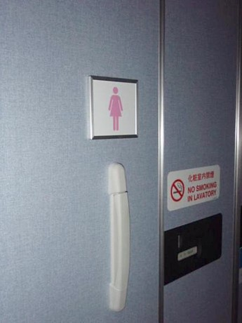 All Nippon Airlines ladies only lavatory