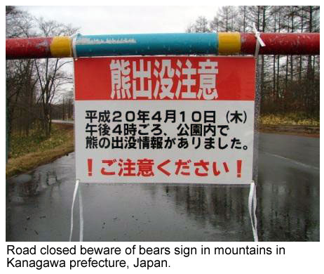 Bear warning sign in Japan
