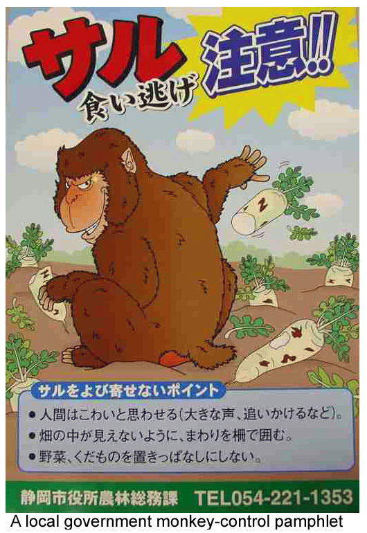 Monkey control pamphlet in Japan