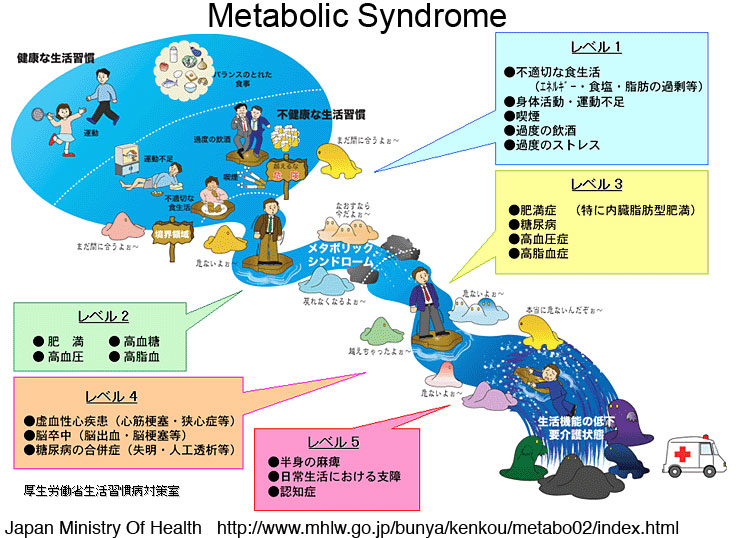 Metabolic Syndrome in Japan