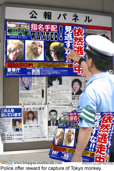 Macacque monkey in Tokyo wanted poster