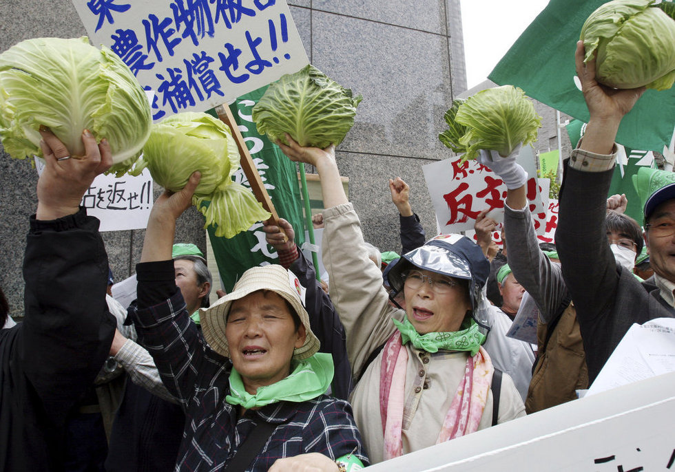 Farmers protest radioactive cabbage Japan