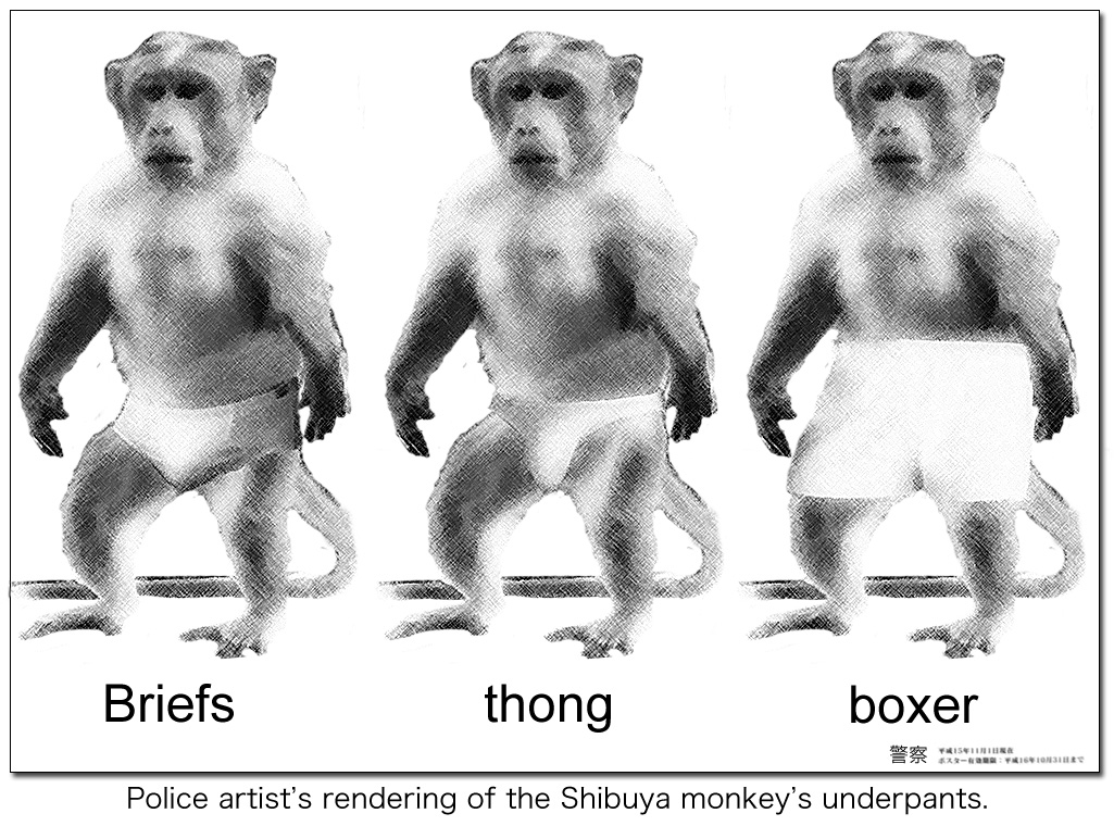 Police artist sketch of Tokyo Shibuya macaque monkey wearing underpants disguise.