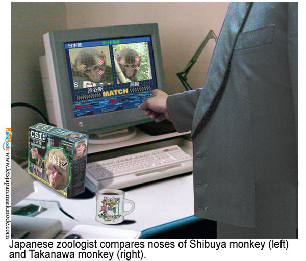 Primate specialist compares Tokyo monkey noses using C.S.I. kit