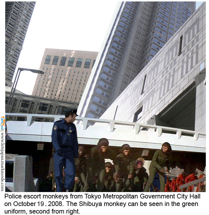 Police lead monkeys away from Tokyo city hall complex in Shinjuku.