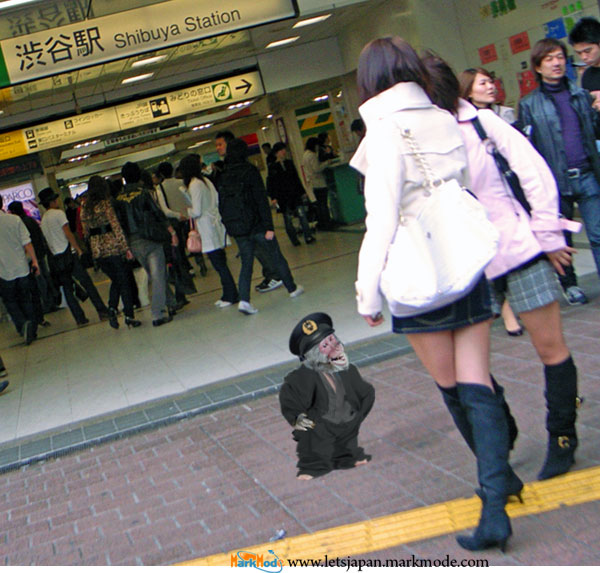 Monkey remains loose somewhere in Shibuya seven days after first appearance.