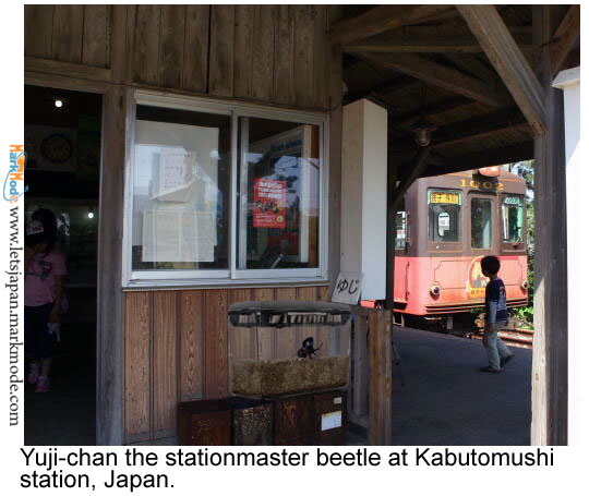Beetle stationmaster at Japan railway.