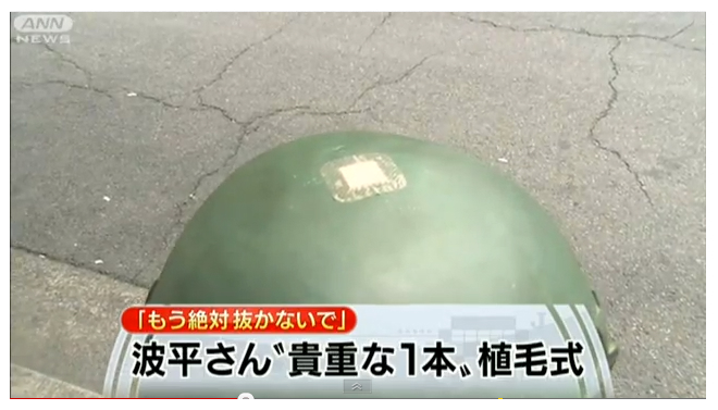 Bronze statue of Namihei Sazae-san head hair vandalized in Japan